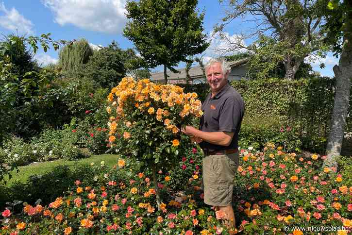Luc stelt tuin met 7.000 rozen open voor bezoekers