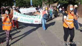 Kraftwerk Wedel: Fridays For Future: Die Alten demonstrieren, die Jugend macht sich rar | shz.de - shz.de