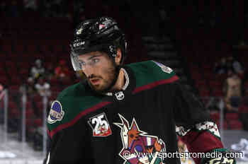 Arizona Coyotes submit plans for new Tempe arena - SportsPro Media