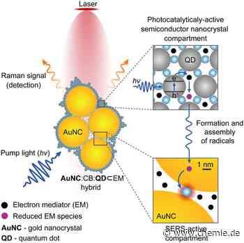 Nano-'Kamera' aus molekularem Klebstoff ermöglicht Echtzeit-Überwachung chemischer Reaktionen - Chemie.de