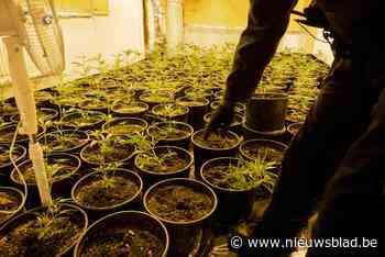 Tot 30 maanden cel gevraagd voor vijftal dat twee cannabisplantages opzette