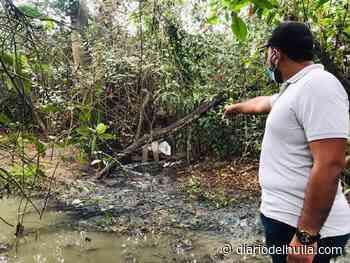 Quebrada La Carepa afectada por aguas servidas de Surabastos - Diario del Huila