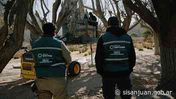 Espacios Verdes trabaja en la Quebrada de Zonda - SI SAN JUAN