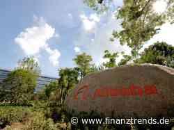 Alibaba-Aktie: Cathie Wood's Ark steigt komplett aus! - Finanztrends
