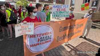"""Alice Weidel in Crailsheim: AfD-Politikerin äußert sich zu Migration und Corona: """"Ich lasse mich nicht impfen"""" - SWP"""