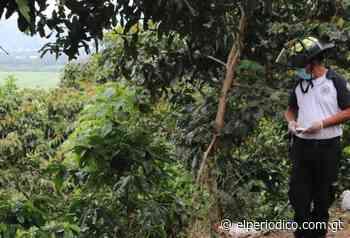 Encuentran cuerpo de una mujer en mirador de Santa Elena Barillas - elPeriódico (Guatemala)