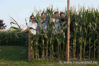 """Ville en Vert is tweedaags muziekfeest: """"Voor het eerst een échte rave cave in de maïs"""""""