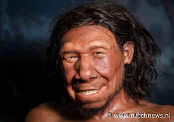 Dutch Neanderthal dubbed Krijn has been given jolly grin - DutchNews.nl - DutchNews.nl