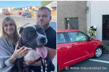 """76-jarige autobestuurder rijdt huis binnen, hond kan nipt ontkomen: """"We waren superhard geschrokken"""""""