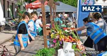 Pritzwalk: Herbstmarkt der Jahnschule und Lese-Ecke der Kunstfreunde am Markttag - Märkische Allgemeine Zeitung