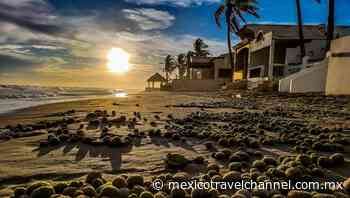 Playa Huatabampito, Huatabampo, Sonora: Ubicación y más - Mexico Travel Channel