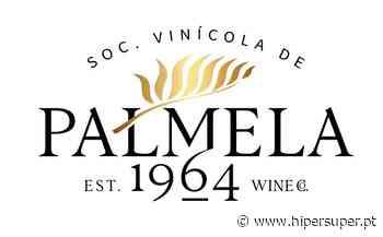 Sociedade Vinícola de Palmela faz rebranding a pensar na expansão internacional - Hipersuper