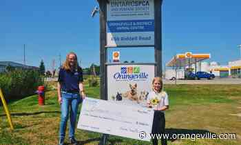 Orangeville girl raises $2,500 for animal shelter and local food bank - Orangeville Banner