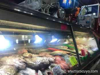 El mercado pesquero de La Guaira: historia y tradición familiar - Efecto Cocuyo