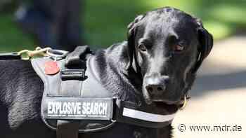 Polizei gibt Entwarnung für Delitzsch - doch kein Sprengstoff in Wohnungen - MDR
