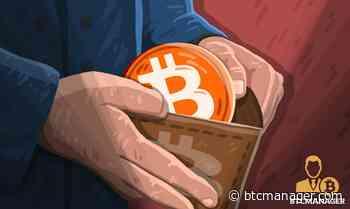 Santiment Reveals Bitcoin (BTC) Unique Addresses' Activities Have Lowered Amid the Recent Crash | BTCMANAGER - BTCMANAGER