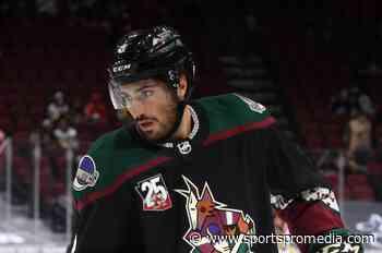 Arizona Coyotes submit plans for new Tempe arena - SportsPro - SportsPro Media