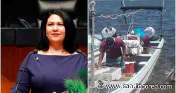 Senadora Alejandra León en contra de criminalizar a pescadores en San Felipe por pesca de Totoaba - SanDiegoRed