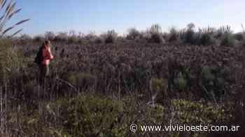 Merlo: se realizará una jornada de caminata en la Reserva - Viví el Oeste Diario