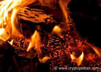 OKEx burns OKB crypto worth $37.8M - Cryptopolitan