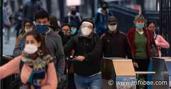 Coronavirus en Argentina: confirmaron 74 muertes y 1.490 contagios en las últimas 24 horas - infobae