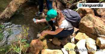 Iniciaron análisis de agua en la quebrada Curití - Vanguardia