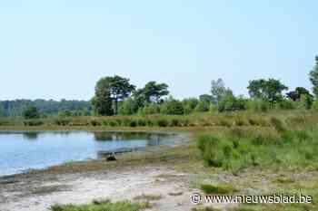 Grenspark Kalmthoutse Heide legt laatste hand aan aangepast plan voor kandidatuur Nationaal Park