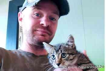 Attente dierenvriend redt doodzieke kitten van verstikkingsdood in dichtgeknoopte plastic zak