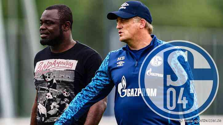 Offiziell: Schalke 04 verlängert Verträge von Gerald Asamoah und Mike Büskens - Sportbuzzer