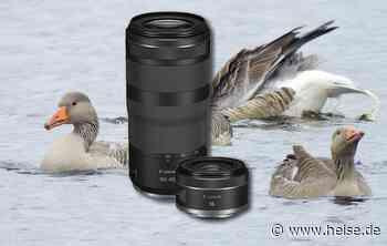 Neue Objektive für Canon EOS R: RF 16mm F2.8 STM und RF 100-400mm F5.6-8 IS USM - heise online