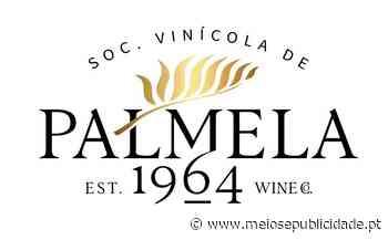 Rita Rivotti assina rebranding da Sociedade Vinícola de Palmela - Meios & Publicidade - Meios & Publicidade