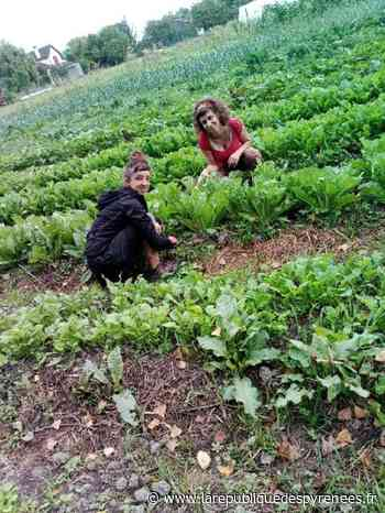 Poey-de-Lescar: des travaux de voirie vont démarrer - La République des Pyrénées