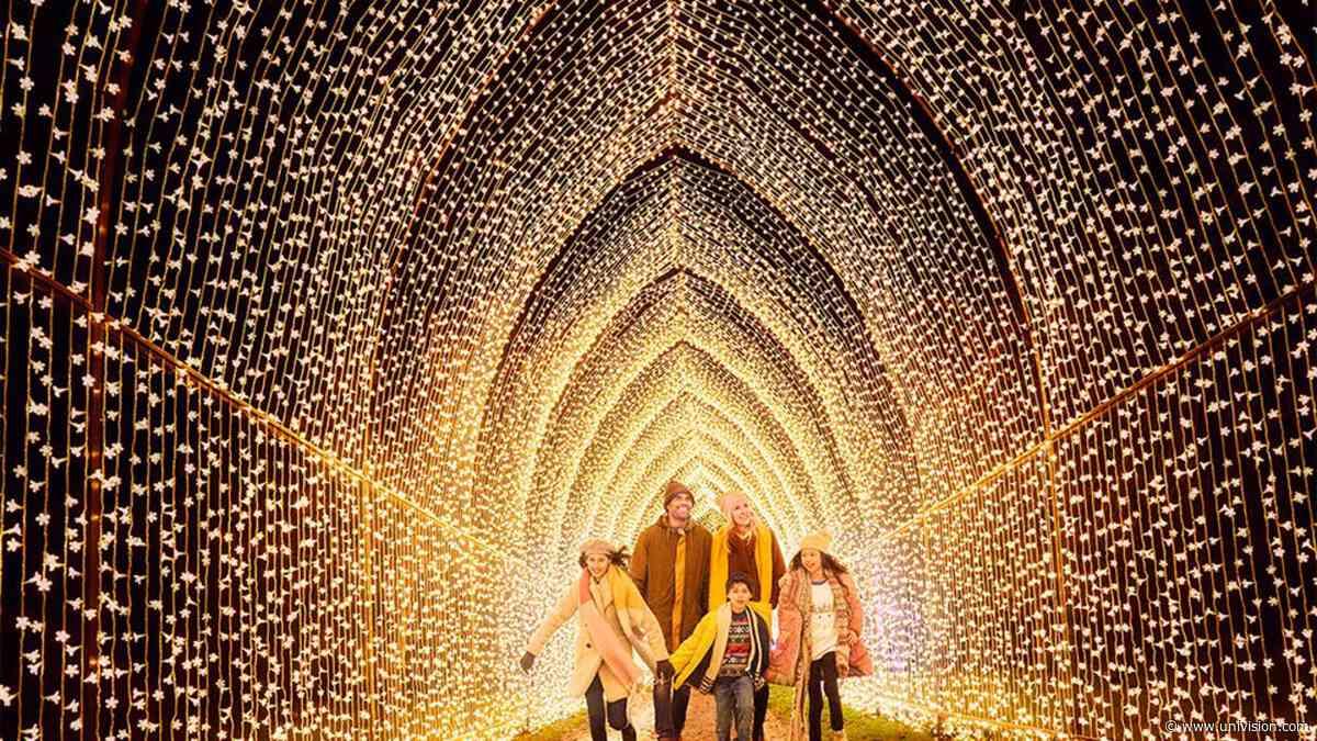 Jardín Botánico de San Antonio lanza el espectáculo de luces navideñas Lightscape 2021 | Fotos | Univision 41 San Antonio KWEX - Univision