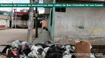 San Cristóbal, entre basura - Diario de Chiapas