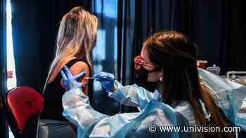 Puedo aplicarme las vacunas contra la influenza y el coronavirus al mismo tiempo | Video | Univision 41 Nueva York WXTV - Univision 41 Nueva York