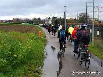 Leerlingen die naar school fietsen krijgen virtuele munt in Sint-Pieters-Woluwe - BRUZZ