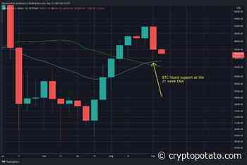 Bitcoin Price Analysis: BTC Holds Critical Level at MA-200 for Weekly Close, Is the Sell-Off Finished? - CryptoPotato