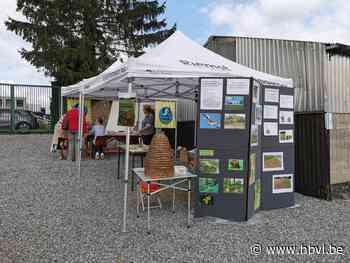 Orchis neemt deel aan Publieksdag in Oostheuvel Lafelt - Het Belang van Limburg