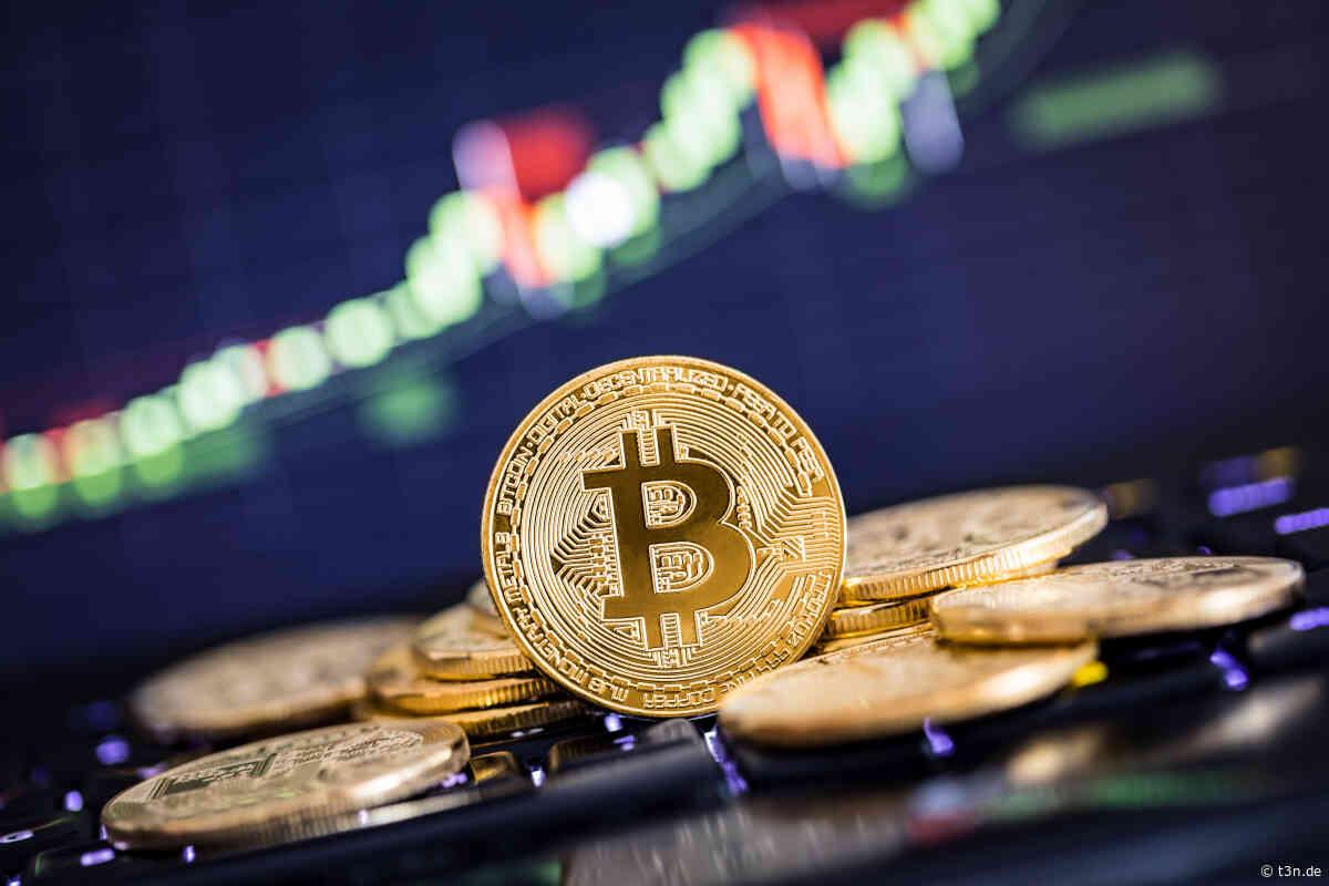 Bitcoin Kurs von 500.000 US-Dollar? – Cathie Wood bullisch auf BTC - t3n – digital pioneers