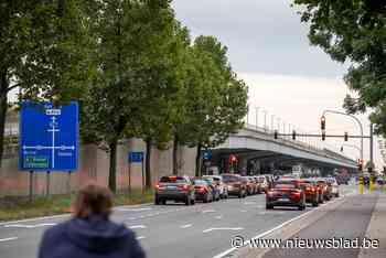 Viaduct Wilrijk wordt in het groen gestoken: mooier uitzicht, minder fijn stof - Het Nieuwsblad