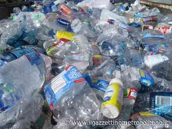 Sesto, l'associazione Plastic Free ha organizzato una giornata di raccolta di rifiuti - Il Gazzettino Metropolitano