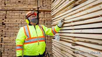 Pandemic lumber boom burnt itself out — and consumers poised to benefit now