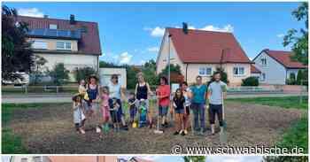 Blühwiese der Agenda Trossingen schreitet voran - Schwäbische