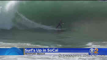 Waves At The Wedge In Newport Beach Expected To Reach 15 Feet - CBS Los Angeles