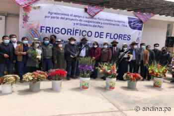 Tarma: Midagri gestionó donación de cámara frigorífica para productores de flores - Agencia Andina