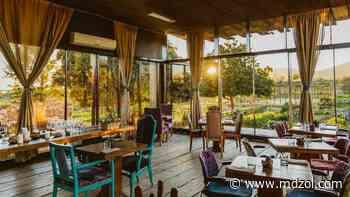 Restaurantes en Valle de Guadalupe: los mejores vinos y propuestas gastronómicas de México - MDZ Online