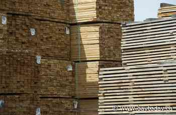Statistics Canada says wholesale sales dropped in July as lumber prices fell