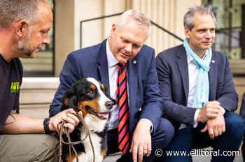 Alemania utilizará perros para rastrear el coronavirus - El Litoral