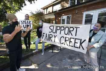 Jagmeet Singh faces Fairy Creek demonstrators during final push in Toronto