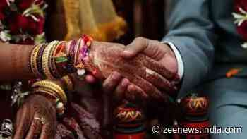 Adults have right to choose their matrimonial partner irrespective of religion, says  Allahabad High Court